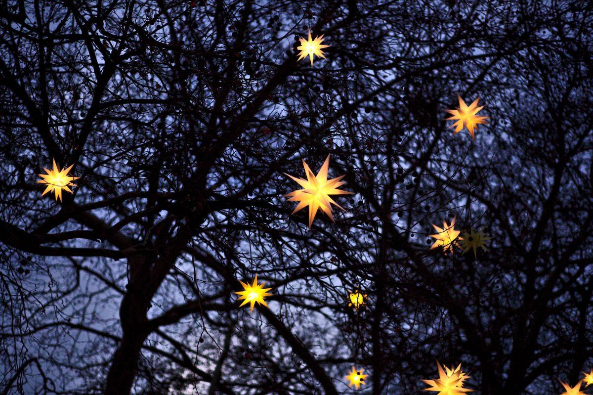 Herrnhuter Sterne als Gartendekoration